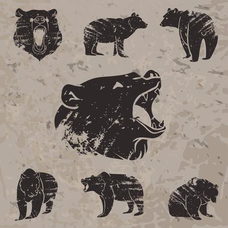 Set di diversi orsi con grunge design. Illustrazione vettoriale Archivio Fotografico - 38891152