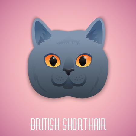 Britse korthaar blauwe kat met oranje ogen op roze achtergrond. Vector illustratie