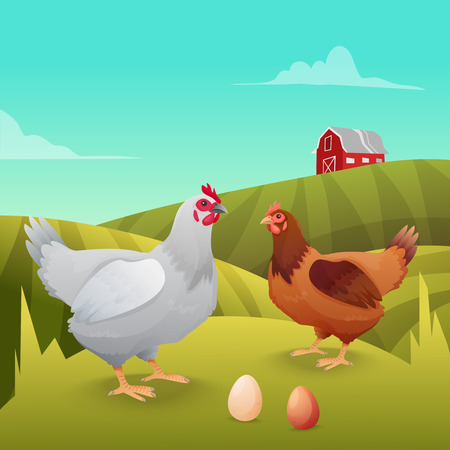 Hens standing on grass with farm background. Vector illustration