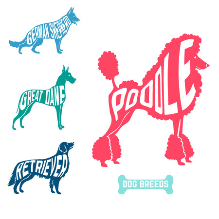 bull dog: Set of dog breeds silhouettes with text inside. Poodle and great dane and retriever, german shepherd. vector illustration