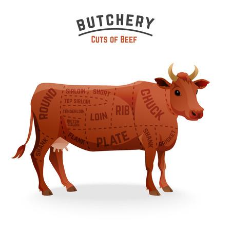 Butchery beef cuts diagram Illustration Vectores