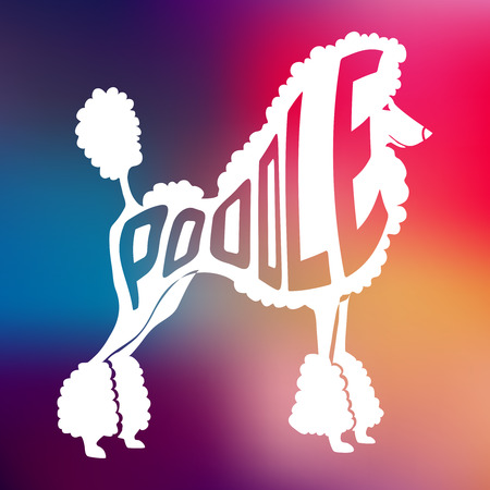 Creative design of name of breed inside dog silhouette on colorful blurred background