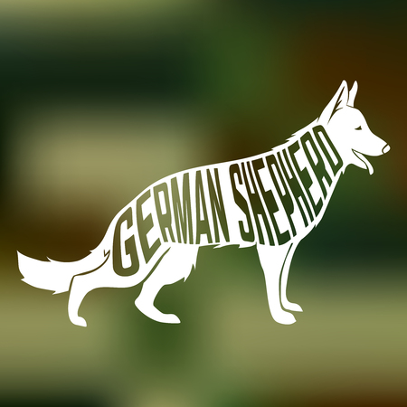 shepherds: Creative design of german shepherd breed dog silhouette on colorful blurred background