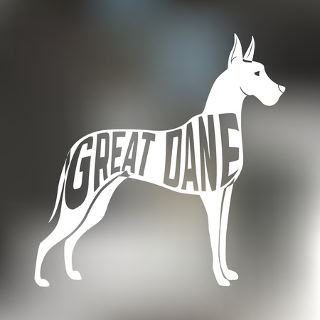 dane: Creative design of great dane breed dog silhouette on colorful blurred background