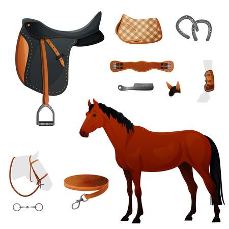 horse saddle: Set of equestrian equipment for horse illustration