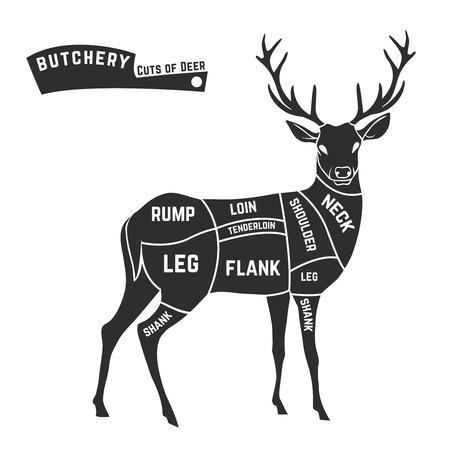 origen animal: Cortes de carne de los ciervos con elementos y nombres. Negro aislado en fondo blanco. Carnicería. Ilustración del vector.