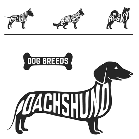 baclground: Isolated dog breed silhouettes set with names of breeds inside on white baclground. Vector illustration Illustration