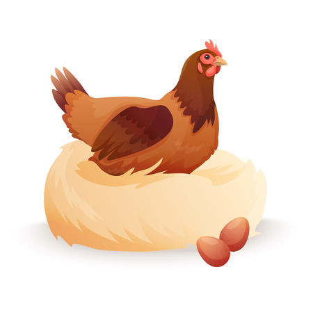 Hen in nest sitting on eggs.. Vector illustration Ilustrace