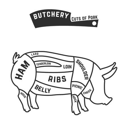 豚肉のアウトラインのカット。ベクトル図  イラスト・ベクター素材