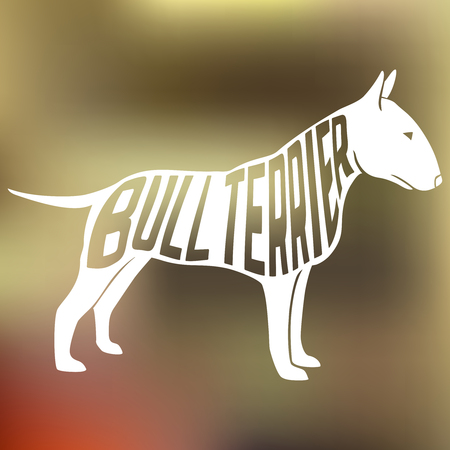 bull dog: Creative design name of breed inside dog silhouette on colorful blurred background. Vector Illustration.