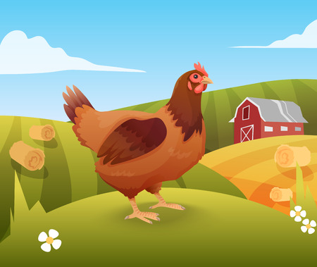 Hen standing on grass with farm on background.