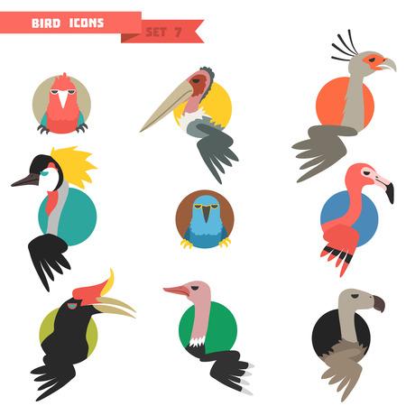 Exotische tropische vogel set met platte design. Papegaaien en flamingo met struisvogel. Vector illustratie Stock Illustratie
