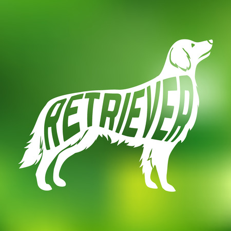 Creative design of name of breed inside dog silhouetteon colorfull blurred background. Vector Illustration. Illustration