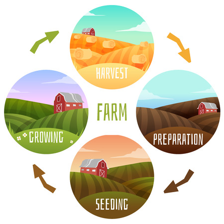 country farm: Farm Landscape life circle of farm. Vector illustration Illustration