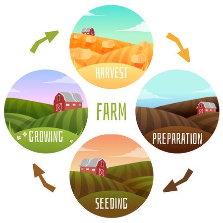 granja: Paisaje Granja c�rculo de la vida de la granja. Ilustraci�n vectorial