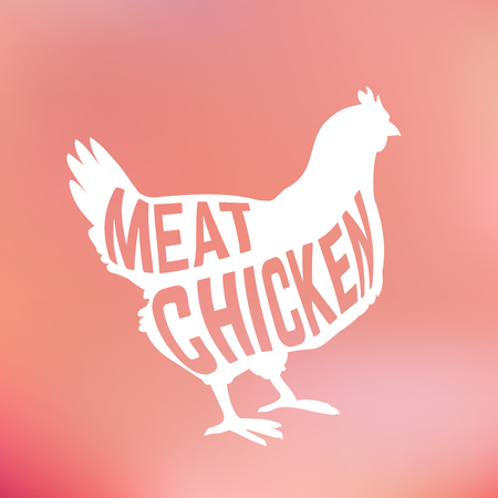 chicken meat: Meat Chicken silhouette with text inside on blur background. Vector illustration