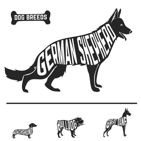 bull dog: Isolated dog breed silhouettes set with names of breeds inside on white baclground. Vector illustration Illustration