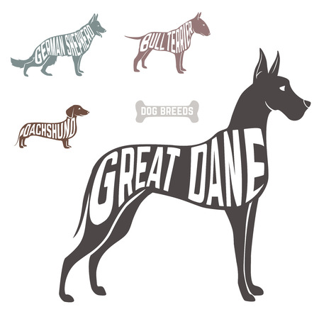 great dane: Concept silhouette of  with text inside isolated black on white background. Vector illustration