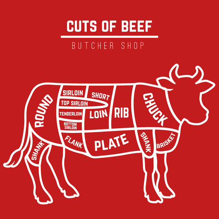 short: Butchery beef cuts diagram . Vector Illustration Illustration