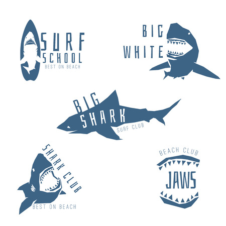 shark mouth: Shark logo concept for surf or beach club, isolated on white background. Vector illustration