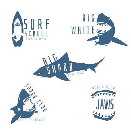 shark: Shark logo concept for surf or beach club, isolated on white background. Vector illustration