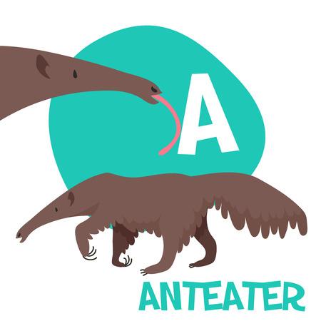 Funny cartoon animals vector alphabet letter set for kids  A is anteater. Vector illustration