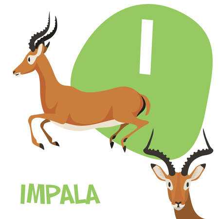 Funny cartoon animals vector alphabet letter for kids from A to Z. I is Impala. Vector illustration
