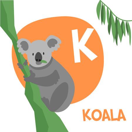 Funny cartoon animals vector alphabet letter for kids from A to Z. K is Koala. Vector illustration