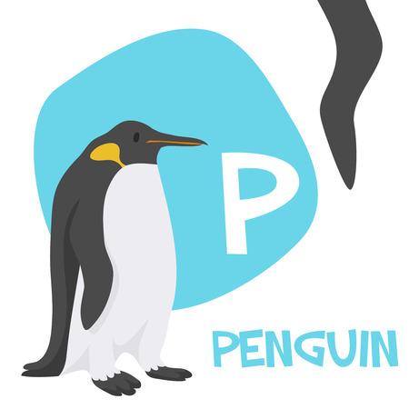 面白い漫画動物のベクトル Z. P A から子供のためのアルファベットは、ペンギンです。ベクトル図  イラスト・ベクター素材