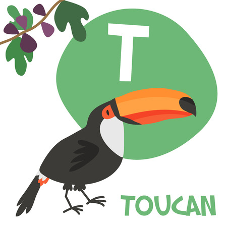 Funny cartoon animals vector alphabet letter for kids from A to Z. T is Toucan. Vector illustration Иллюстрация