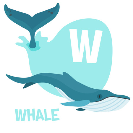 Funny cartoon animals vector alphabet letter for kids from A to Z. W is Whale. Vector illustration