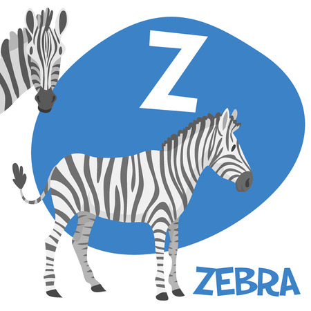 letter head: Funny cartoon animals vector alphabet letter for kids from A to Z. Z is zebra Vector illustration