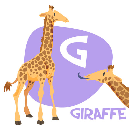 Funny cartoon animals vector alphabet letter for kids from A to Z. G is Giraffe. Vector illustration