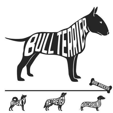 toros bravos: Conjunto de razas de perros siluetas con el texto en el interior. Ilustración vectorial