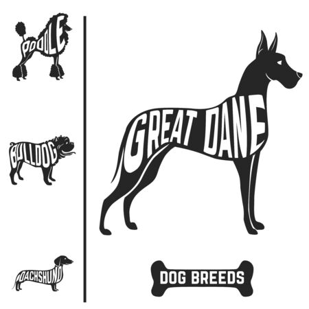 Isolated dog breed silhouettes set with names of breeds inside on white baclground. Vector illustration Иллюстрация
