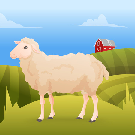pecora: Realisic carino pecore in piedi sul gras con fattoria sullo sfondo. Illustrazione vettoriale