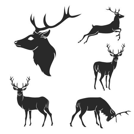 venado: Conjunto de siluetas de ciervos del bosque negro. Adecuado para el logotipo, emblema, patrón, tipografía, etc. aislada negro sobre fondo blanco. Ilustración vectorial