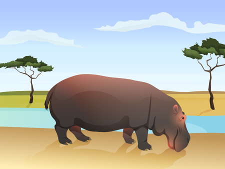 Beautiful wild african animal illustration. Big Hippo standing on the grass with african savannah, water and tree on background. Vector Illustration.