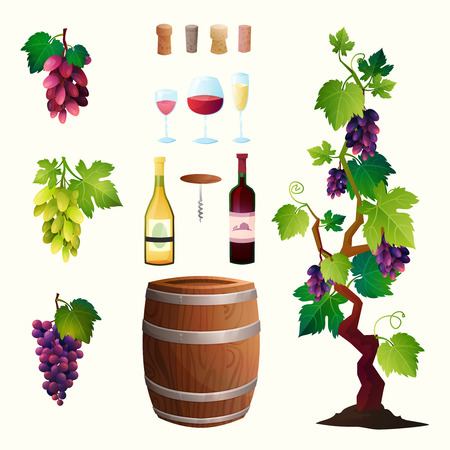 illustration with wine barrel, wine glass, grapes, grape twig