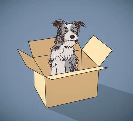 sad dog: Sad homeless street dog alone in box color. Color vector illustration. EPS10