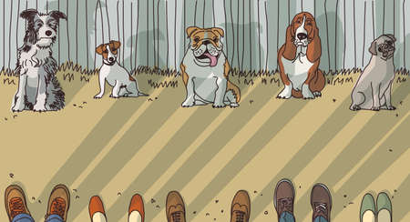 breeds: Dog training breeds and owner exercise. Color vector illustration. EPS8