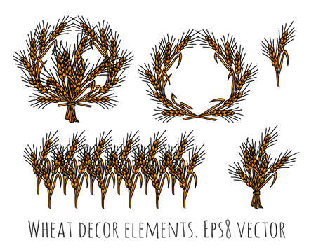 Wheat rye objects isolate decor elements. Stock Photo