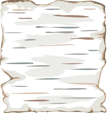 Birch bark background frame isolate. Color vector illustration. EPS8