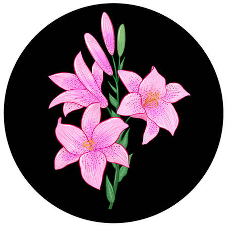 branch of pink lilies
