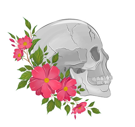 skull with pink flowers Ilustrace