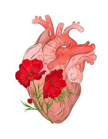 red poppy flower and human heart Foto de archivo - 134879613