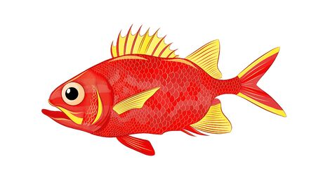 funny sea bass red yellow vector Illusztráció