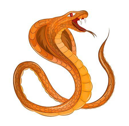 orange Cobra evil poisonous vector