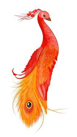 fairy bird peacock orange red