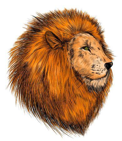 la tête d'un lion réalisme orange Vecteurs